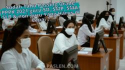 Sudah Tahu Penghitingan Passing Grade PPPK 2021 guru SD, SMP, SMA, SLB & non-guru Yang Harus di Capai ?
